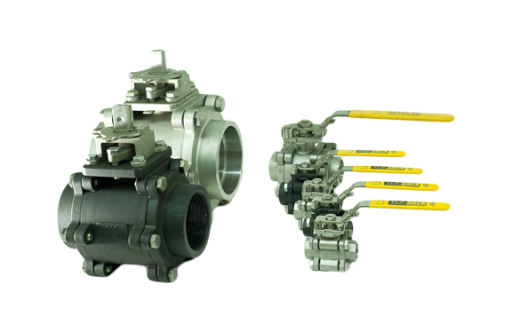 300/200 - Multi-Choice Ball Valves