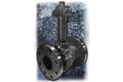Low Temperature and Cryogenic Ball Valves