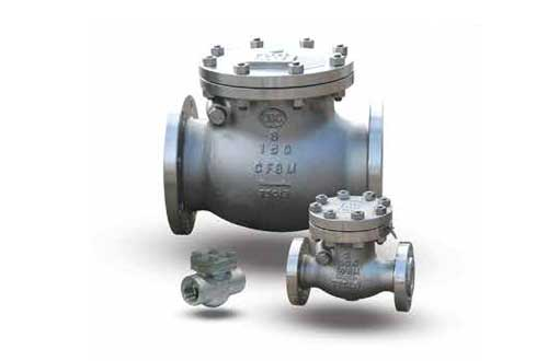NEWCO STAINLESS STEEL CHECK VALVE